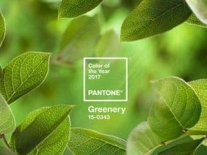 Barva leta 2017 je Greenery-travnato zelena
