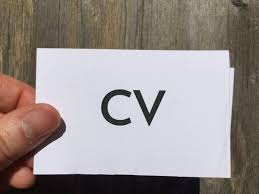 CV vizitka / pot do uspeha