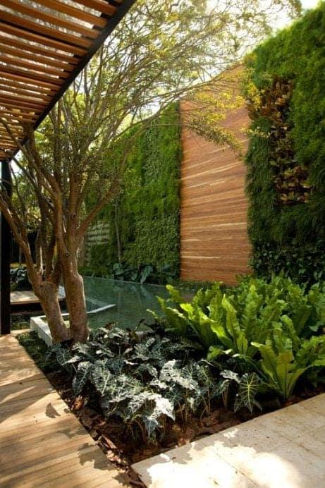 moderni vrtni zid rastline ograja cena