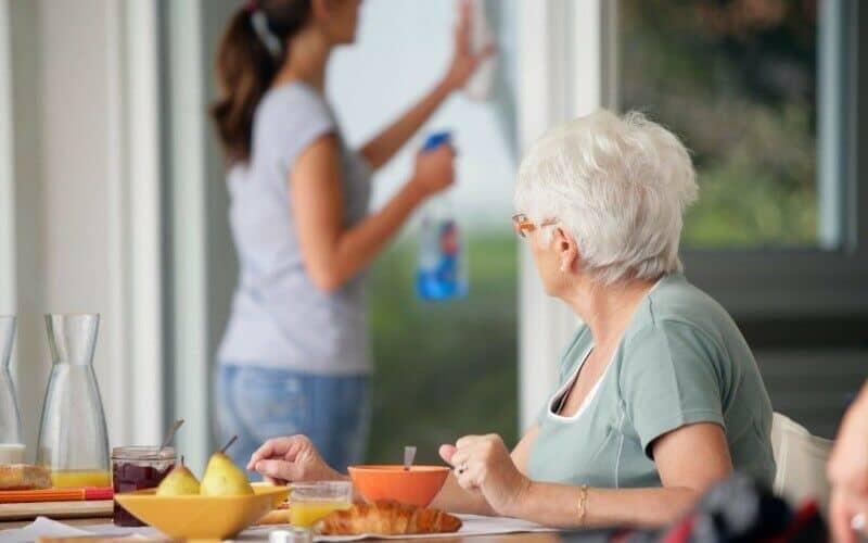 pomoc-na domu-cenik-ciscenje-vzdrzevanje-hisna-opravila
