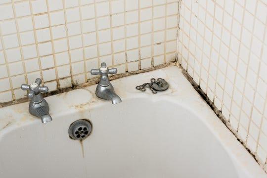 nasveti-za-odstranjevanje-plesni-v-kopalnici