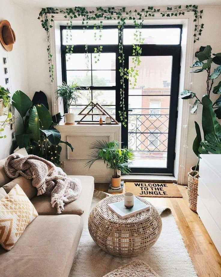 adaptacija-cena-ideje-stanovanje-rastline