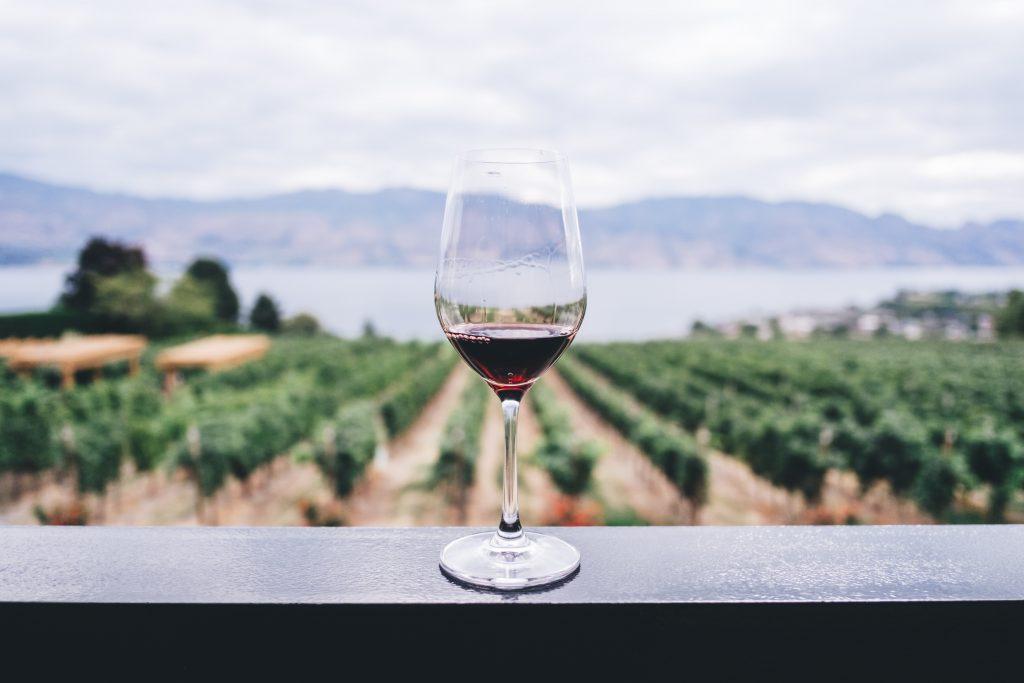 kozarec vina in vinograd