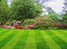 Pokošena trava