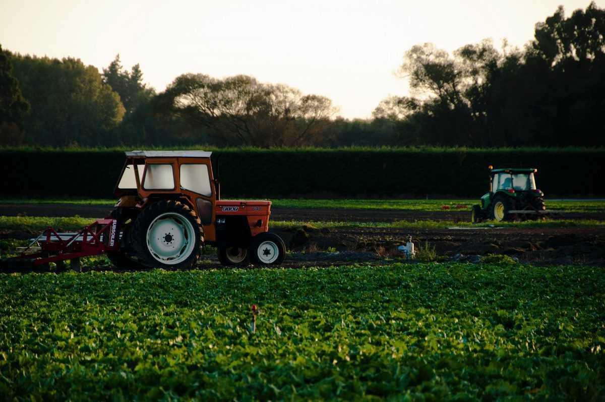 F-kategorija-avtošola-vožnja-traktorja