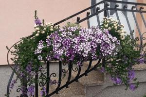 vrtni_svet_dores
